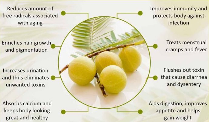 Uses of Indian-Gooseberry-आँवला